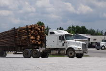 Logging truck stopped at a gas station