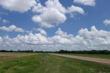 Farmland.