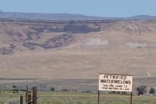 "A sign advertising ""Petrified Watermelon"""