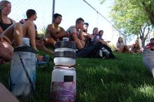 SC2SC gathered in the grass
