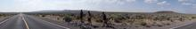 Panorama in the middle of nowhere. Sagebrush and grass.